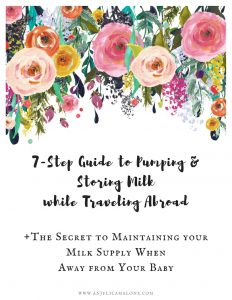 7 Step Guide to Pumping & Storing Milk While Abroad