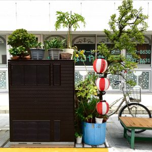 Tiny green spaces in Tokyo