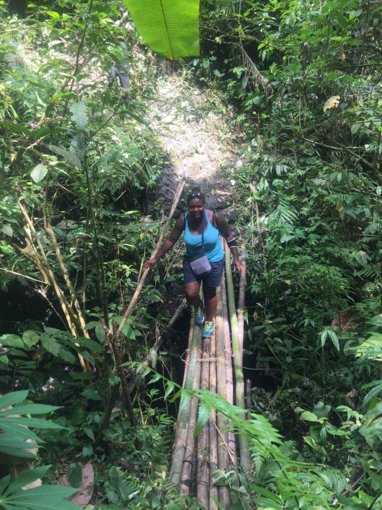 Bamboo bridge in Bali